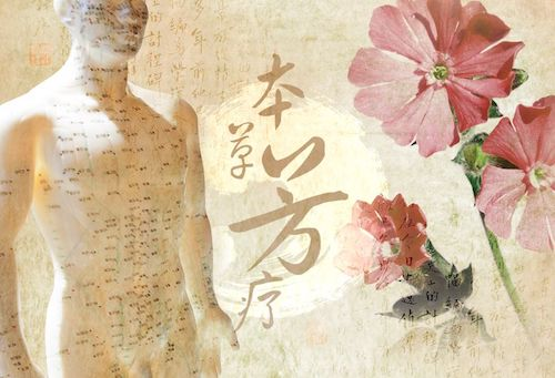 Yoga & Shiatsu: Elemento Legno